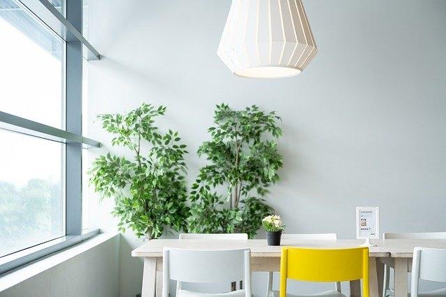 rastline notranje